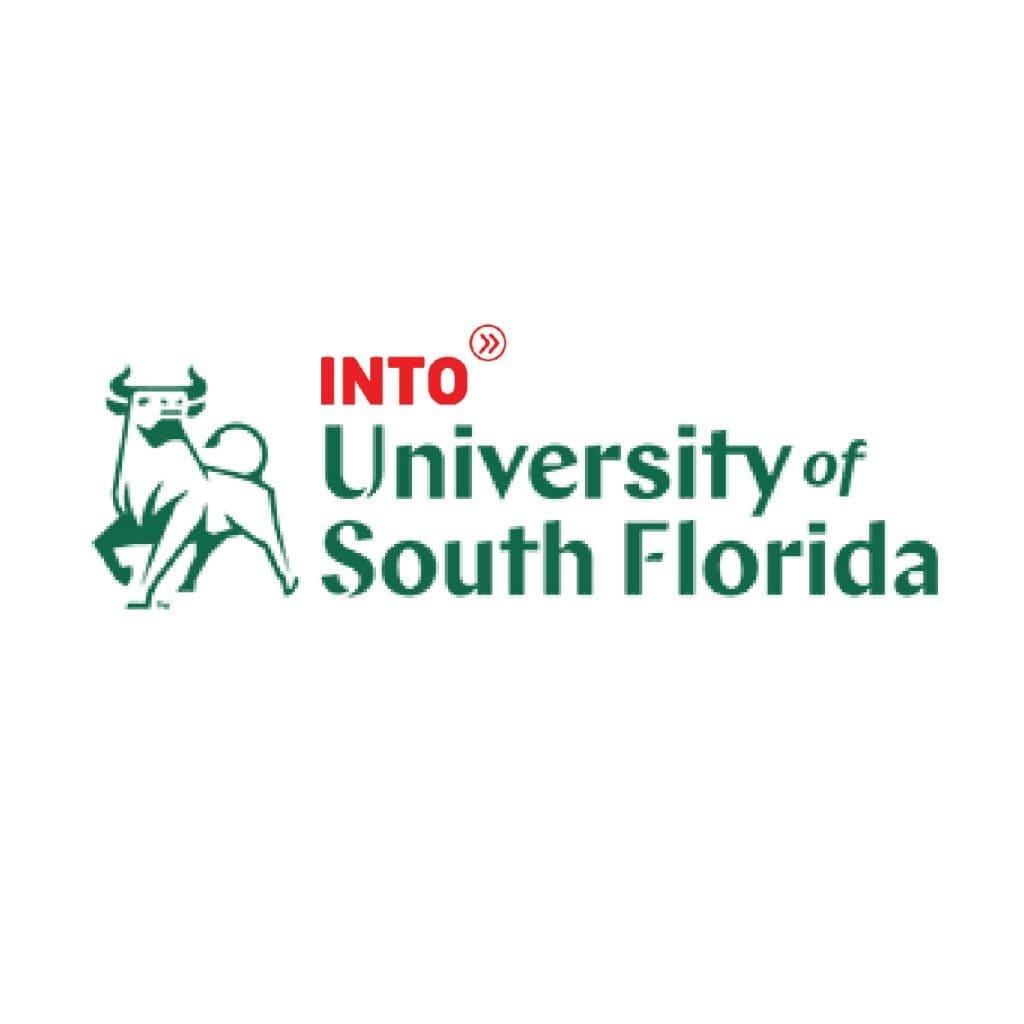 university of south florida, nc world education links, study in usa, เรียนต่ออเมริกา